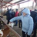 В школах Новгородской области в сентябре появятся агроклассы