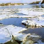 В Новгородской области раскрыли убийство человека, тело которого нашли в реке