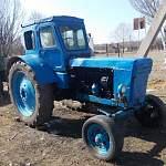 Чудовский цыган заработал на продаже несуществующего трактора через «Авито»