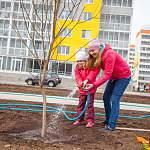 Посадка новых деревьев в «Ивушках» превратилась в настоящий праздник