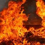 На выходных в области произошло пять крупных пожаров, один человек погиб