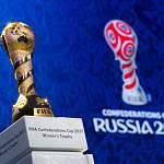 Федеральный бюджет потратил 600 млн рублей на поезда для болельщиков Кубка конфедераций
