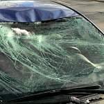 За «слегка раздавленную» наледью машину суд взыскал ущерб в пользу водителя