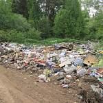 В сельском поселении Новгородской области устроили свалку бытовых отходов