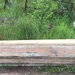 Незакопанный гроб шокировал посетителей Ермолинского кладбища