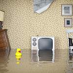 Пока жители дома на Хутынской воюют с управляющей компанией, их квартиры заливает вода