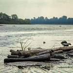 Крупные новгородские реки и Ильмень из-за ливней поднялись на метр выше обычного