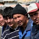 Растут цены за трудящихся мигрантов-нелегалов