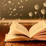 Книга рецептов счастья появится в Новгородской области. Мировой литературы оказалось недостаточно