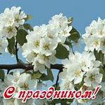 Мероприятия, посвященные празднику Весны и Труда