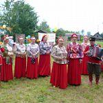 День рождения родной деревни в Чудовском районе