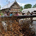 «У Спаса всего в запасе!» -  съезжий праздник  в Музее народного деревянного зодчества «Витославлицы»