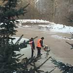 Гендиректор БКО Владимир Можжерин провел эксперимент с норками с асфальте