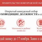 Правительство Новгородской области объявляет открытый конкурсный набор на руководящие должности
