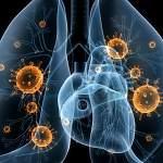 Специалисты назвали предварительные причины вспышки вирусной пневмонии в Великом Новгороде