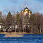 В Валдае местные жители обеспокоены лебединой судьбой перед наступающими холодами