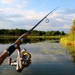 Два новгородца получили срок за рыбалку