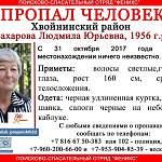 В эти минуты в лесах Хвойнинского района ищут пенсионерку, пропавшую в конце октября