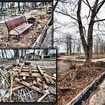 В Боровичах продолжается благоустройство городского парка. Довольны не все