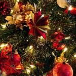 Тверичанин хотел сдать главную новогоднюю елку маловишерцев на металлолом. Но его поймали
