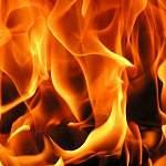 «Любытинские вести» подробно рассказали о пожаре в деревне Шереховичи и жизни погорельцев