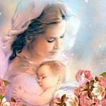 В новгородском «Доме для мамы» не оставят без ответа ни одну женскую просьбу о помощи. Но помощь нужна и самому Дому