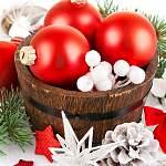Новые руководители НовГУ решили основательно украсить учебное заведение к зимним праздникам