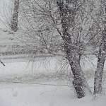 На дорогах Новгородской области идёт ликвидация последствий сильного снегопада
