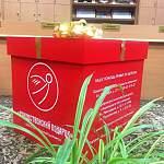 Фотофакт: вот такие симпатичные коробочки установят по всем Боровичам во время Рождественского марафона