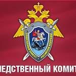 К истории со вспышкой инфекции в Старой Руссе подключился Следственный комитет