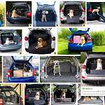 17 000 просмотров видео... И новгородцы продолжают наблюдать за собакой, запертой в багажнике