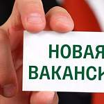 В Новгородской области ищут будущего министра образования