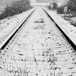Тверской следком начал проверку истории о гибели юной пассажирки поезда Москва-Санкт-Петербург