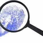 Прокуратура прокомментировала криминальную обстановку в Новгородской области
