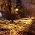 Депутат заявляет о бесконтрольной вырубке деревьев в Великом Новгороде