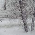 Синоптики предупредили о сильном снегопаде в Новгородской области