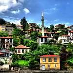 Российских туристов предупреждают о вспышке сибирской язвы в Турции