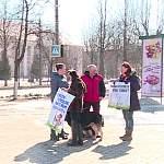 Ревнители чистоты просят новгородцев не забывать про пакетики для собачьих «сюрпризов»