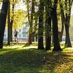 Завтра в Новгородской области стартует «Марш парков – 2018»