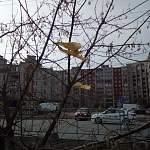 Юрий Бобрышев ответил на вопрос «есть ли в городе хозяин?» и призвал наводить чистоту