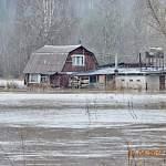 Главред «Любытинских Вестей» рассказала о происходящем на затопленной территории