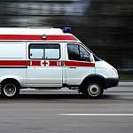 Двое молодых мужчин погибли в Батецком районе, влетев на легковушке в дерево