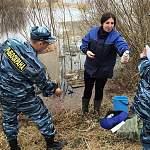 Ильменский «Красный рыбак» скрывал щучью икру и загрязнял Ловать