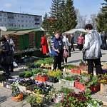 «Первомайская ярмарка» в Чудове вышла за пределы России