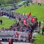 В Новгородской области в рядах «Бессмертного полка» прошли более 17 тыс. человек