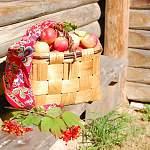 В Чудове все желающие смогут отведать варенье из сада Некрасова