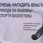 Новгородцев призывают нагадить