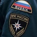 В Окуловском районе сотрудники МЧС пытаются вытащить тело погибшего в аварии водителя