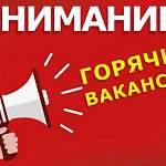 19 сентября. Пять горячих вакансий в Великом Новгороде, Пестове и Боровичах