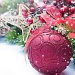 Андрей Никитин и Елена Писарева поздравили новгородцев с наступающим Новым годом